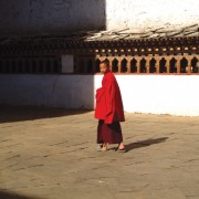Young Monk at Paro Dzong