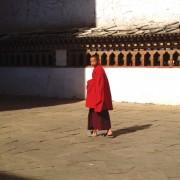 Young Monk at Paro Dzong